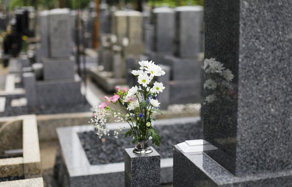 kwiaty grobowe